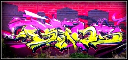 DomZ (47)