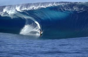 asp-world-surfing-awards