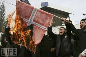 norway-flag-burned-by-muslims-in-norway-not-eu-flag-in-photo-450x299