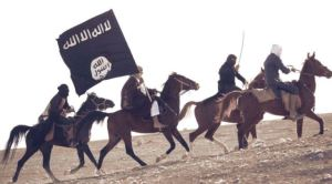ISIS-D8